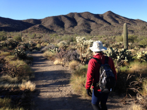 Mike Ehlerman hiking Tucson Mountains