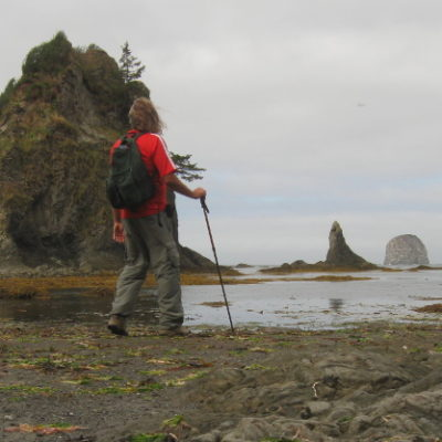 Ozette Triangle hike