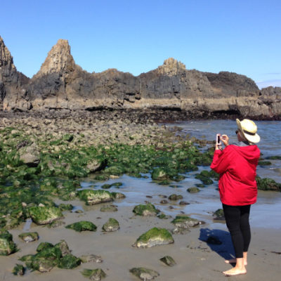 Sea stacks at Seal Rock State Recreation Area, south of Newport