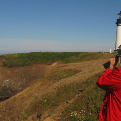 Scoping out sea lions at Yaquina Head , Newport