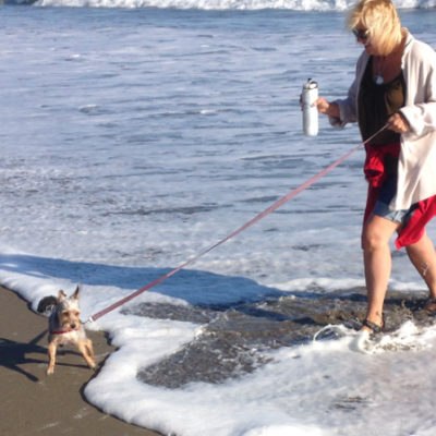 Peanut's first time at the beach...and he loves it! Seacliff State Beach.