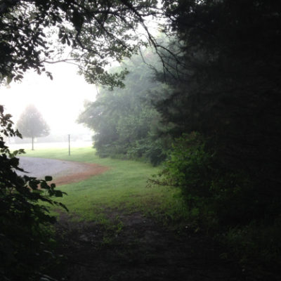 Foggy morning in Prairie Haven